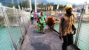 Rishikesh, il ponte di Ram Jhula, a Swarg Ashram.