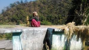 Rishikesh, villaggio di Padna. La raccolta delle sementi.