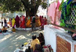 Amarkantak, 8 febbraio 2016. Il rituale del girotondo intorno all'albero sacro.
