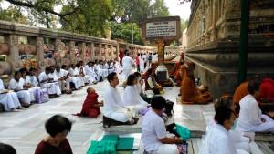 Bodhgaya, 26 febbraio 2016. Meditazioni al Mahabodhi Temple.