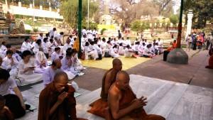 Bodhgaya, 26 febbraio 2016. Preghiera nel parco del Mahabodhi Temple.