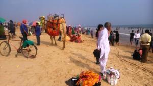 Copia (3) di Orissa, Puri, 5 gennaio 2016. Aspetti della Golden Beach.