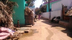 Karnataka, Kalamapura. Mattino.
