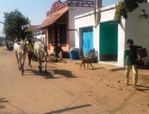 Karnataka, Kamalapura. Interni della città.