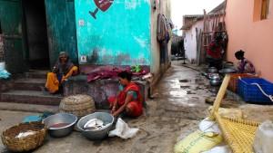 Orissa, Puri. La cura del pesce.