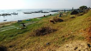 Orissa, Sanapurha. Pescatori del Chilika Lake.