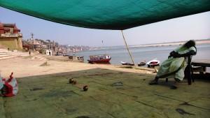 Varanasi, 11 marzo 2016, mattina. Il relax del celebrante.