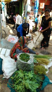 Varanasi, 22 marzo 2016, Bengali Tola. Mercato delle erbe per l'Holi festival.