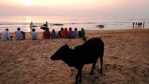 Gokarna, 1 febbraio 2017. L'incanto del tramonto sulla Main Beach.