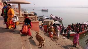 Varanasi, 19 dicembre 2016. Arrivi di pellegrini sui ghat.
