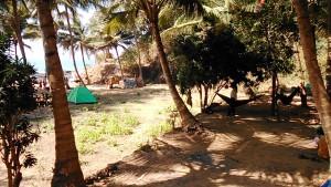 Gokarna, 25 gennaio 2017. Paradise Beach.