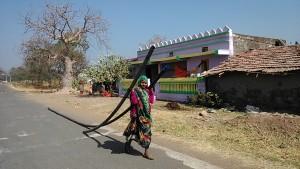 Mandu, 27 dicembre 2016. Trasporto di tubature nei villaggi Adivasi.