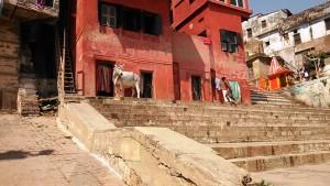 Varanasi, 1 marzo 2017. La casa rossa lungo i ghat e il piccolo tempio accanto.