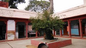 Varanasi, 9 marzo 2017. Abitazioni intorno al gruppo di templi del Palazzo reale.