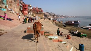 Varanasi, tarda mat