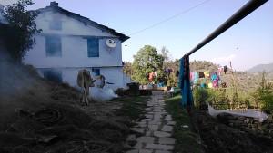 Kasar Devi, 11 aprile 2017. Un'abitazione. 2017.Abitazione
