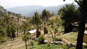 Kasar Devi, 16 aprile 2017. Paesaggio verso mezzogiorno.