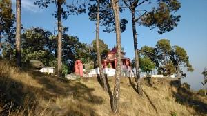tempio 4